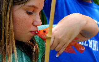 Почему возникает запах рыбы из ротовой полости